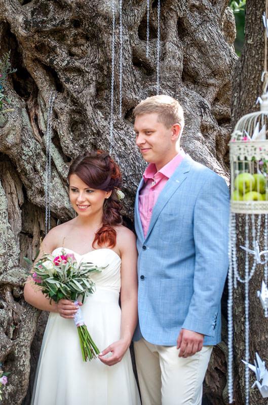 Свадьба у старинной оливы